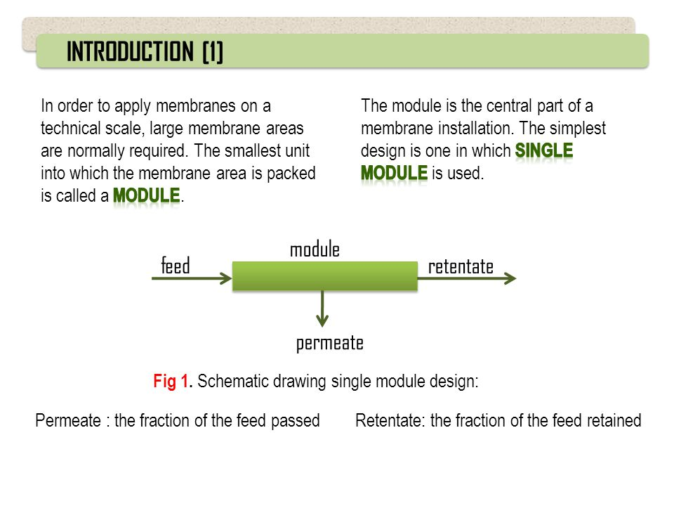 INTRODUCTION [1] feed module retentate permeate